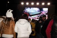Открытие Олимпиады в Сочи, Фото: 37
