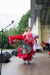 Национальные праздники в парке, Фото: 148