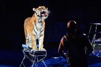 Цирковое шоу, Фото: 138