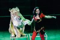 Львы Африки приехали в Тулу, Фото: 100