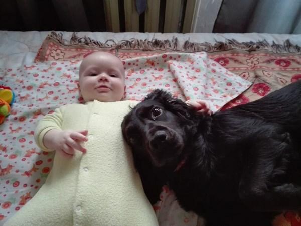 Лучшие друзья)