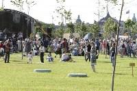 Закрытие фестиваля Театральный дворик, Фото: 142