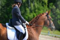 В Ясной поляне стартовал турнир по конному спорту, Фото: 109