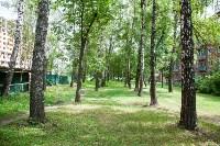 Яблоневый сад и роща на ул. Серова, Фото: 12