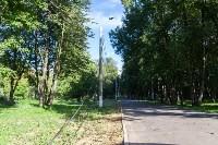 В Баташевском саду из-за непогоды упали вековые деревья, Фото: 12