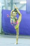 Кубок общества «Авангард» по художественной гимнастики, Фото: 118