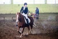 Открытый любительский турнир по конному спорту., Фото: 4