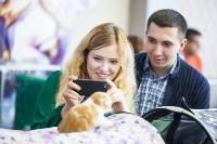 В Туле прошла выставка «Пряничные кошки» , Фото: 14