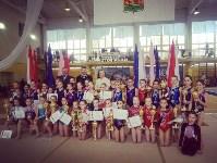 Туляки на соревнованиях по спортивной гимнастике в Брянске., Фото: 17