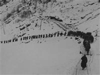 Русские солдатыобеспечивают коммуникации австрийских горных стрелков в  Доломитовых Альпах., Фото: 21