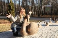 """Открытие скульптуры """"Лебединое озеро"""" в Центральном парке, Фото: 15"""