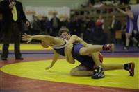 Представительный турнир по греко-римской борьбе. 16 ноября 2013, Фото: 4