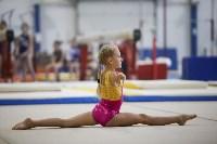 Спортивная гимнастика в Туле 3.12, Фото: 102