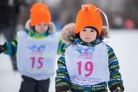 Яснополянская лыжня 2017, Фото: 91