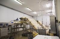Дмитрий Миляев посетил предприятие по производству замороженной рыбы и полуфабрикатов, Фото: 7