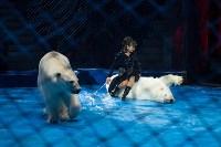 Тульский цирк, Фото: 89
