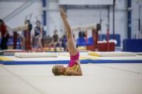 Спортивная гимнастика в Туле 3.12, Фото: 104