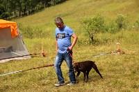 Выставка охотничьих собак под Тулой, Фото: 99