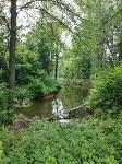 Эко-парк «Моя деревня», Фото: 31