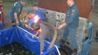 Узловские пожарные спасли двух белух, Фото: 6