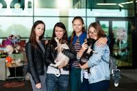 Благотворительный фестиваль помощи животным, Фото: 20
