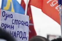 В Туле проходит митинг в поддержку Крыма, Фото: 35