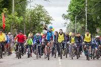 В Туле прошел большой велопарад, Фото: 163