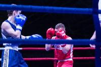 В Туле прошли финальные бои Всероссийского турнира по боксу, Фото: 17