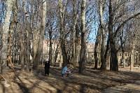 Рогожинский парк., Фото: 3