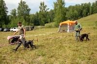 Выставка охотничьих собак под Тулой, Фото: 93
