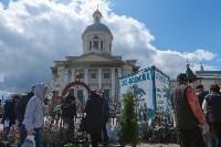 """Фестиваль """"Сад-Палисад""""-2016, Фото: 10"""