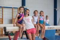 Тульские гимнастки готовятся к первенству России, Фото: 53