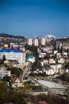 Олимпиада-2014 в Сочи. Фото Светланы Колосковой, Фото: 52