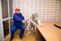 """Цирк """"Максимус"""" и тигрица в гостях у Myslo, Фото: 3"""