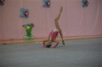 IX Всероссийский турнир по художественной гимнастике «Старая Тула», Фото: 26