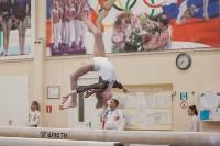 Первенство ЦФО по спортивной гимнастике, Фото: 178