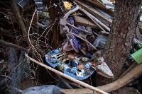 Плюшкин собрал на участке тонны мусора, Фото: 6