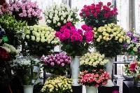 Ассортимент тульских цветочных магазинов. 28.02.2015, Фото: 61