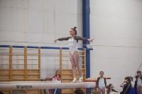 Первенство ЦФО по спортивной гимнастике, Фото: 168