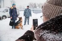 """""""Студенческий десант"""" - 2017., Фото: 58"""
