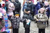 Открытие елки на площади искусств. 19.12.2014, Фото: 62