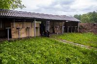 В Туле спецподразделения ОМОН и СОБР провели учения, Фото: 18