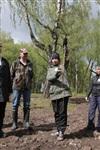Высадка молодого леса, Фото: 21