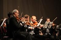 Государственный камерный оркестр «Виртуозы Москвы» в Туле., Фото: 18