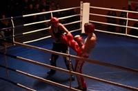 В Туле прошла матчевая встреча звезд кикбоксинга, Фото: 41