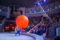 Туляков приглашают на новогоднее представление «Ёлка в цирке», Фото: 56