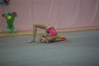 IX Всероссийский турнир по художественной гимнастике «Старая Тула», Фото: 27