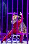 Шоу фонтанов «13 месяцев»: успей увидеть уникальную программу в Тульском цирке, Фото: 231