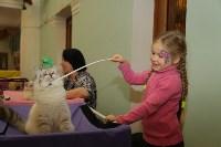 Выставка кошек. 21.12.2014, Фото: 35