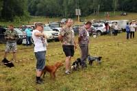 Выставка охотничьих собак под Тулой, Фото: 44
